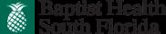 bhsf-logo (2015)
